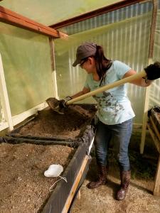 Kari turning soil