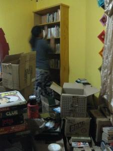 pato shelving, box piles